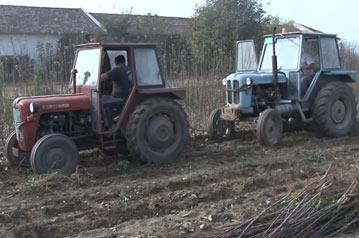 vadjene sadnica redno vezanim traktorima